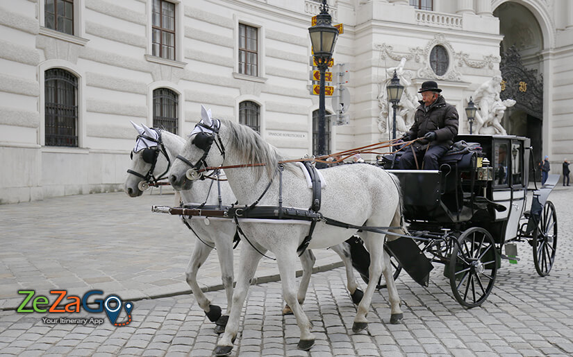 עגלון מסיע כרכרה ברחובות העיר העתיקה של וינה