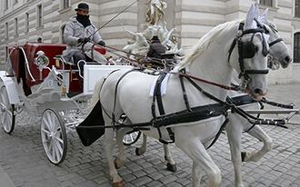 סיור בכרכרה עם סוסים - Fiaker